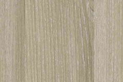 H 1267 Ясень песочный молина ST22